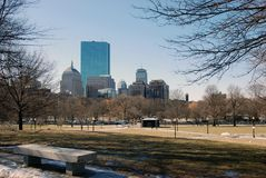 Downtown Boston buildings. View of Boston Buildings from Boston Commons Royalty Free Stock Photo