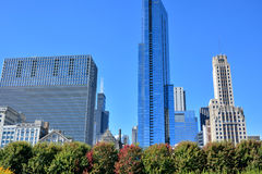 Downtown buildings beside of Chicago Millennium Park Stock Photography