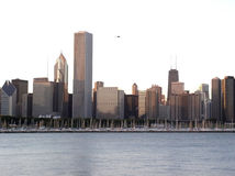 Downtown Chicago. Chicago skylane Royalty Free Stock Photos