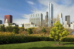 Downtown Chicago. View from the park to downtown Chicago Stock Photo