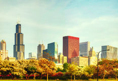 Downtown Chicago Royalty Free Stock Images