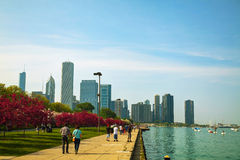 Downtown Chicago, IL on a sunny day Royalty Free Stock Photos