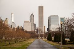 Downtown Chicago Illinois Skyline Stark Winter Park Trees. Grey skies cover tall buildings along Lake Shore Drive in Chicago Illinois Royalty Free Stock Image