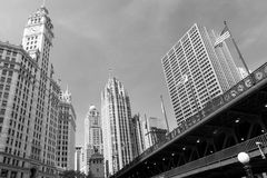 Downtown in Chicago. Royalty Free Stock Photography