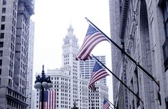 Downtown Chicago Street with American Flags. Flying in the wind royalty free stock image