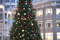 Downtown Christmas tree Royalty Free Stock Photos