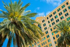 Downtown Coral Gables. Cityscape view of downtown Coral Gables with palm trees and classic architecture stock images