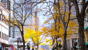 Downtown Denver. Denver, Colorado, USA-November 9, 2015. Lunch hour on 16th Street Mall in late Autumn stock footage