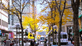 Downtown Denver. Denver, Colorado, USA-November 9, 2015. Lunch hour on 16th Street Mall in late Autumn stock video footage