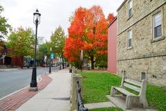 Downtown Fredericton Stock Photos
