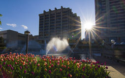 Downtown Gatineau in spring Stock Images