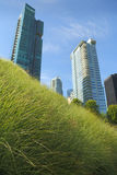 Downtown Green Roof, Vancouver Royalty Free Stock Photo