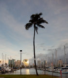 Downtown Honolulu at dawn Ala Wai harbor Stock Photography