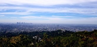 Downtown la from Griffith Park stock photos