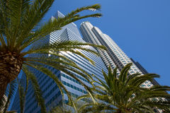 Downtown LA Los Angeles skyline California palm trees Stock Photos