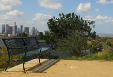 Downtown Los Angeles From Elysian Park. Enjoying the view of the downtown Los Angeles from Elysian Park in the North stock photos