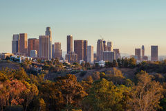 Downtown Los Angeles skyline Royalty Free Stock Photos