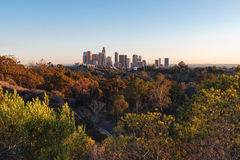 Downtown Los Angeles skyline, 2015 royalty free stock image
