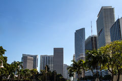 Downtown of Miami Stock Photo