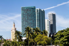 Downtown of Miami Stock Image