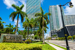 Downtown Miami Cityscape Royalty Free Stock Images