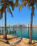 Downtown Miami Skyline Royalty Free Stock Photos