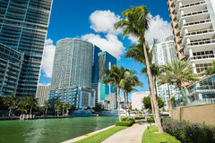 Downtown Miami Royalty Free Stock Photo