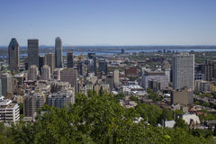 Downtown Montreal on a summer day Royalty Free Stock Photos