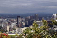 Downtown Montreal view. From Mt. Royal, Qc, Canada royalty free stock photography