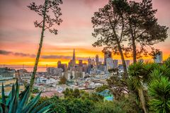 Downtown San Francisco. Beautiful view of business center in downtown San Francisco in USA at dusk Stock Image