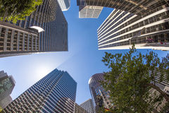 Downtown San Francisco with office buildings. San Francisco downtown with office buildings Royalty Free Stock Photo