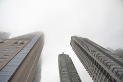 Downtown skyscrapers under the fog Stock Image