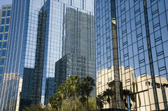Downtown Tampa Bay Reflection Stock Photography