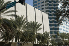 Downtown Tampa Florida Royalty Free Stock Photos