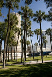Downtown Tampa Park Royalty Free Stock Image