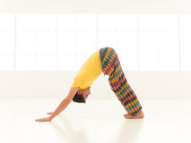 Downward Facing Dog Ardho Mukha Svanasana Royalty Free Stock Photos