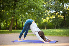 Downward facing dog pose in park alley Stock Photos