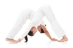 Downward Facing Dog Position Stock Image