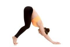 Downward-facing dog yoga pose for beginner Stock Image