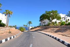 A downward road to the red sea. Through palm trees and houses on the blue sky Royalty Free Stock Photo