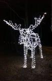 DOWODZENI światła w formie łosia Fotografia Royalty Free