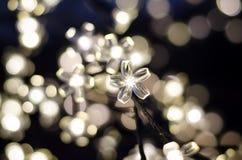 Dowodzeni światła w postaci kwiatów Obrazy Stock