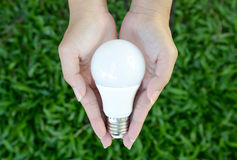 DOWODZONA żarówka - energetyczny oświetlenie w nasz kontrola Fotografia Stock