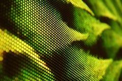 DOWODZONA ekranu SMD zieleń fotografia stock