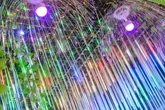 Dowodzony Jellyfish zaświecać kolorowy zdjęcia royalty free