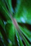 DOWODZONY parawanowy obrazka zielonego węża centrum zdjęcia royalty free