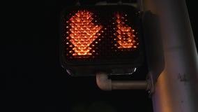 Dowodzony pieszy sygnał przy Streetlight zbiory wideo