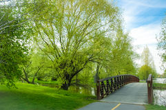 Dows Lake Park pedestrian bridge with spring in full bloom. Royalty Free Stock Images