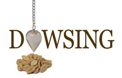 Dowsing for a peanut allergy Stock Photography