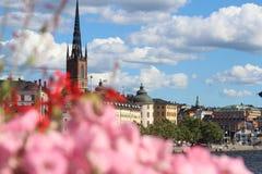 Dowtown di sorveglianza di Sotckholm attraverso un giardino immagini stock